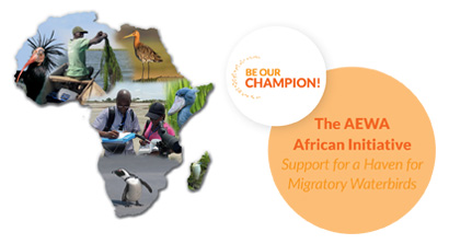The AEWA African Initiative - Support for a Haven for Migratory Waterbirds